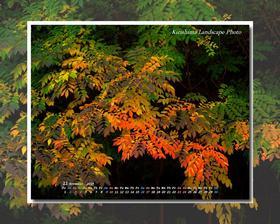 今月のカレンダー付き壁紙を別館の霧島風景写真壁紙館にアップしました・・・別窓で開きます